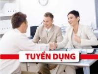Công ty An Việt Phát tuyển nhân viên đồ hoạ