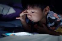 Khai Giảng khóa học online trực tuyến dành cho trẻ em ở Lâm Đồng