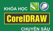 Khóa học Corel online cấp tốc tại Thái Bình