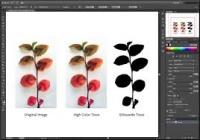 Video hướng dẫn tự học Adoble illustrator ( Ai) căn bản và nâng cao - bài 9