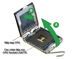 Cách ráp CPU vào mainboard chuẩn LGA775 |hoc sua chua may tinh|noi hoc sua chua may tinh |dia chi hoc sua chua may tinh