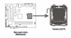 Cách ráp CPU vào mainboard chuẩn LGA775