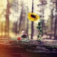 Hướng dẫn tự học photoshop CS3 - Phần 5