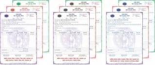 Khóa học thực hành khai báo thuế ở TP HCM