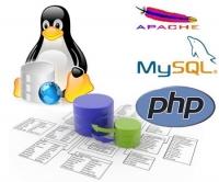 Nơi học lập trình web với PHP & MYSQL ở quận 10, TPHCM