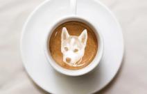 Tạo Hình Chú Chó Cưng trong Ly Cà Phê Sữa