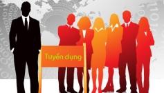 Tuyển dụng Nhân viên Hành chính-  Nhân Sự Tại TP.HCM