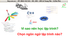 Vì sao nên học lập trình và học ngôn ngữ lập trình nào?