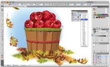 Video hướng dẫn tự học Adoble illustrator (Ai) căn bản - Bài 2: Thao tác với đối tượng